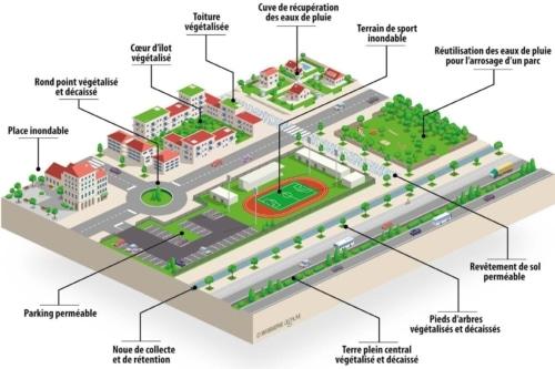 , Inondation et pollution : Quelles solutions pour reperméabiliser les sols dans la métropole ?, Made in Marseille