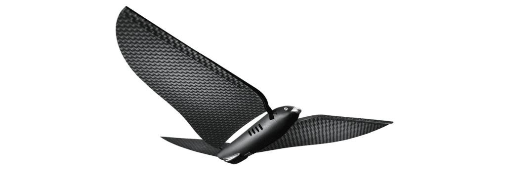 Edwin-Van-Ruymbeke-drone-oiseau-marseille