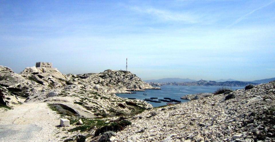 "EcoBalade, EcoBalade et Pl@ntNet, les ""Shazam"" qui vont vous faire aimer la nature, Made in Marseille"