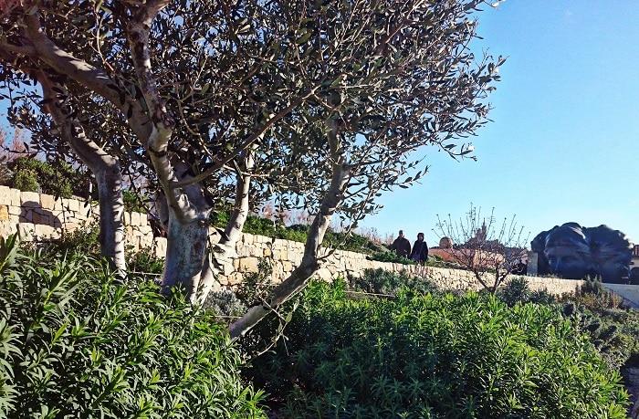 Le jardin du fort saint jean d croche la victoire du paysage - Terrasse vue jardin marseille saint etienne ...