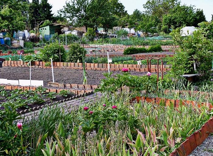 jardins-familiaux-la-castellane-quartier-nord