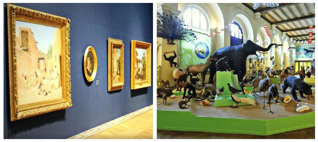 , Visiter le Muséum d'Histoire Naturelle et le Musée des Beaux-Arts de Longchamp, Made in Marseille, Made in Marseille