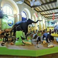 , Visitez les plus beaux musées de Marseille, Made in Marseille, Made in Marseille