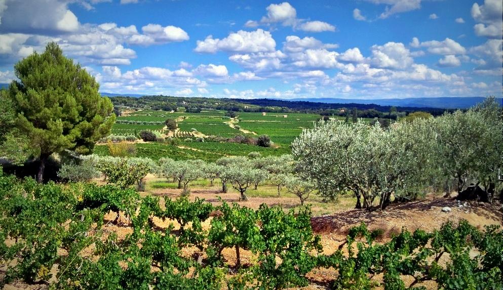 , L'Europe verse 476M€ à la région pour l'agriculture et l'environnement !, Made in Marseille